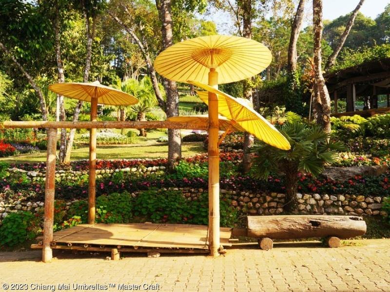 Image   Chiang Mai Garden Umbrellas Decorate In The Garden