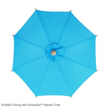 Color sample - Blue Canvas Umbrella