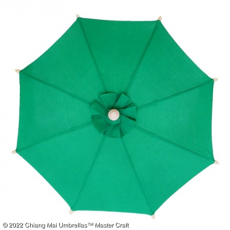 Color sample: Dark Green Canvas Umbrella