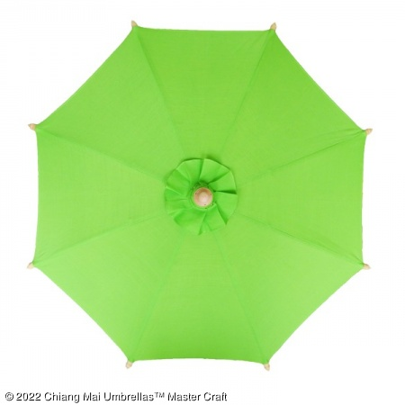Color sample: Light Green Canvas Umbrella