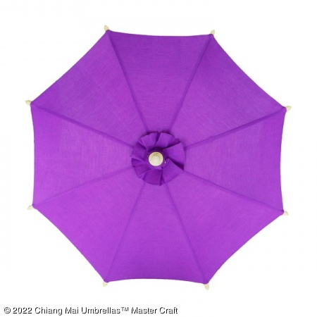 Color sample: Purple Canvas Umbrella