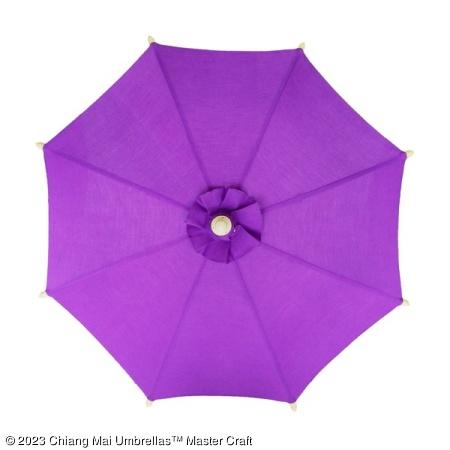 Color sample: Purple Canvas Umbrella