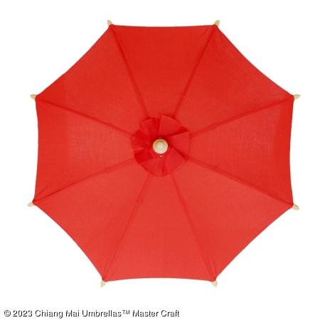 Color sample: Red Canvas Umbrella