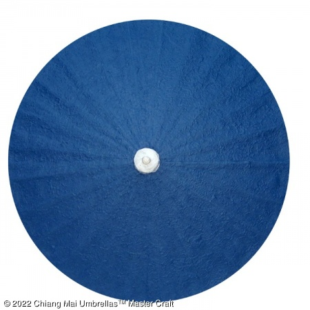 Color sample - Dark Blue Paper Umbrella