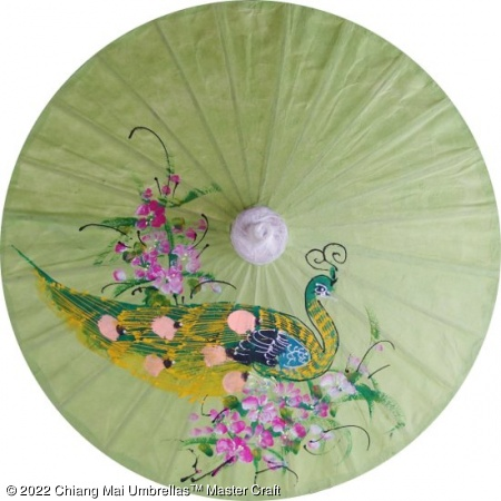 Paper Umbrella - Hand painted green peacock and flowers on a light green background