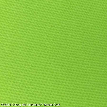 Pool Patio Umbrella - Light Green
