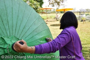 Cleaning a bamboo umbrella's classic oiled canopy