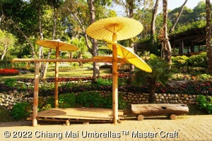 Image - Chiang Mai Garden Umbrellas Decorate in the Garden