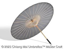 Image - Grey Sun Brelli, large - transparent umbrella