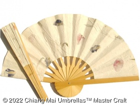 Image - Two off-white pressed flowers fans in the sunshine